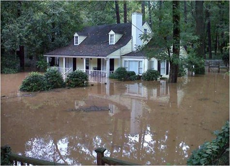 Flooded Home in the Woods