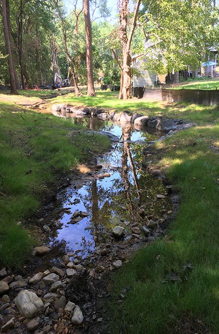 Brookhaven Stream July 11 2017 photo 3